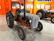 MASSEY FERGUSON 35 With Copper / Gold Belly